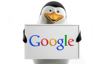 Interesting Analysis about Gainers and Looser of Google Penguin 2.0 Update